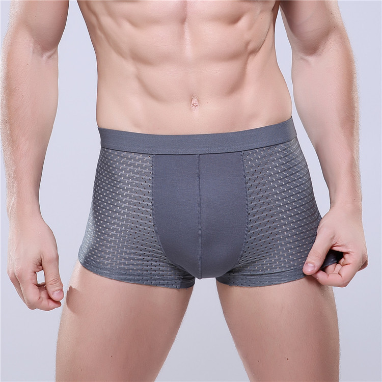 Chenke Brand Men Underwear Sexy Mesh Ice Silk Men's Boxers U Convex Shorts Breathable Underpants 7 Solid Color Plus Size L-XXXL