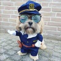 Engraçado roupas para cães legal cachorro de estimação traje terno cachorro roupas casaco roupas para cachorro traje roupa enfermeira terno para animais ropa perro 27s2