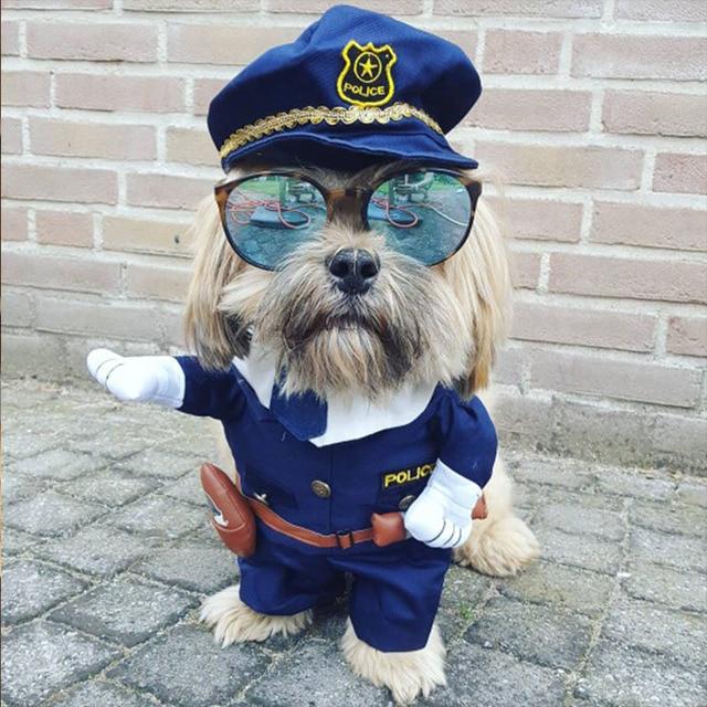 Śmieszne pies ubrania fajne Pet Dog kostium strój dla szczeniaczka płaszcz odzież dla psów kostium pielęgniarki Pet garnitur Ropa Perro 27S2
