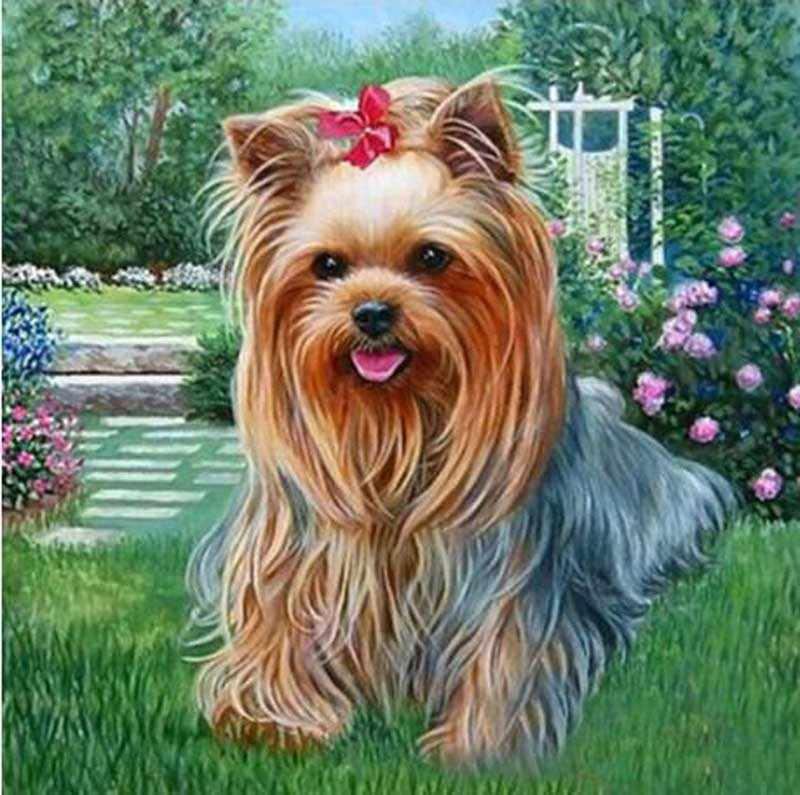 Full Square drill 5D DIY Diamond Embroidery Dog Yorkshire Terrier Diamond Painting Cross Stitch Rhinestone Mosaic decor gift