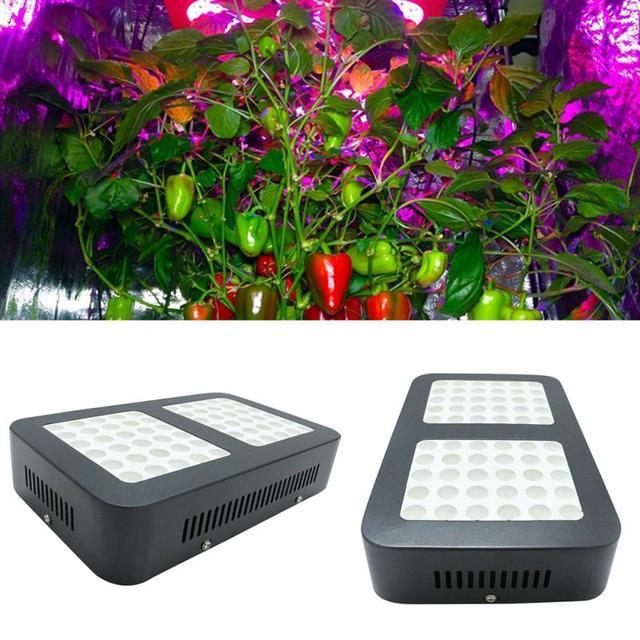 Us Uk Plug 60leds Grow Light 600w Full Spectrum For Indoor Greenhouse Tent Plants