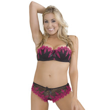 цена Women's Bra Setes  1/2 Cup Sexy Bra Underwire Push Up Cup Fashion Embroidery Bra Brief Sets Lace Panties 32B 34B 36B 38B онлайн в 2017 году
