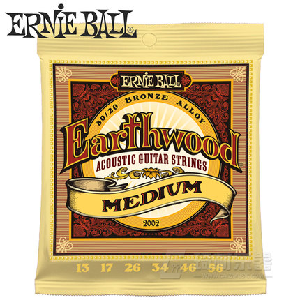 Ernie Ball Earthwood Acoustic Guitar Strings Bronze Alloy 80/20 2002 2003 2004
