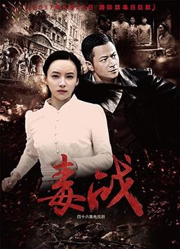 《毒战》2017年中国大陆战争电视剧在线观看