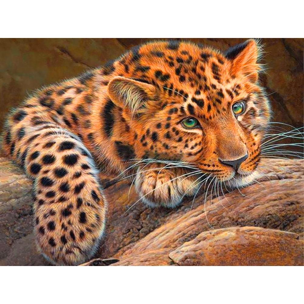 Peinture bricolage en diamant 5D carré rond | Carré complet, broderie de joli tigre, point de croix, strass, mosaïque, décor de maison