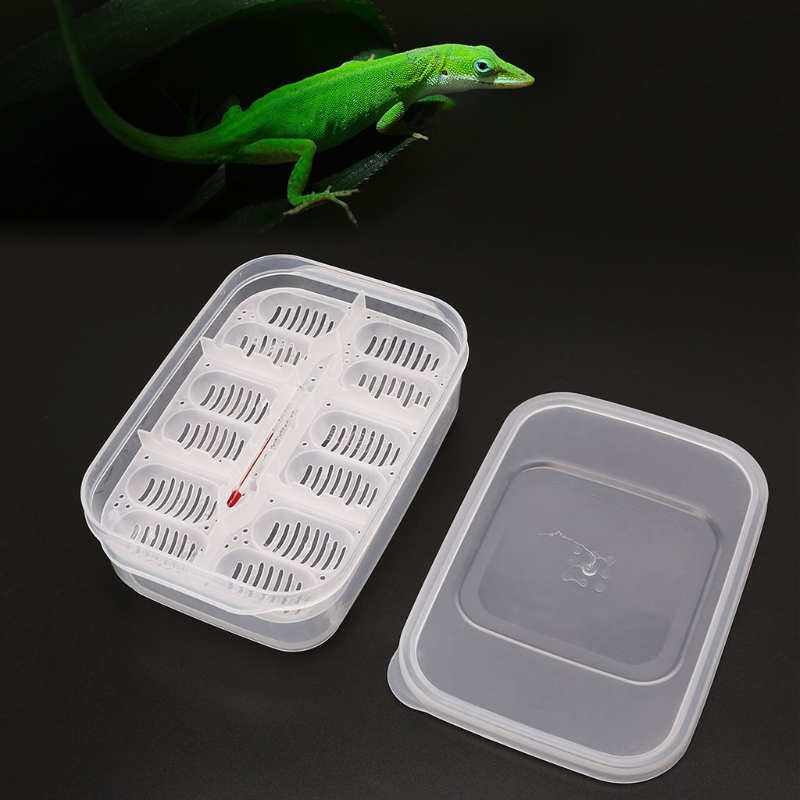 Plastic Reptiles Eggs Incubator Tray Eggs Hatcher Box Lizard Gecko Snake Case Amphibians Breeding Tools Supplies 12 Grids-M20