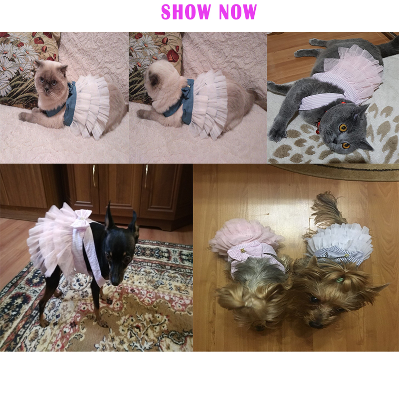 Hoomall Pet Dog Clothes Dress Sweety Princess Dress Small Medium Dogs Pet Accessories Teddy Puppy Wedding Dresses Fashion 1pc #5