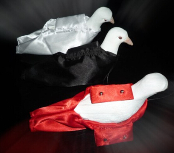 2pcs Single Hand Dove Appearing Pocket Magic Tricks Magician Dove Bag Stage Street Illusion Accessories Gimmick Props