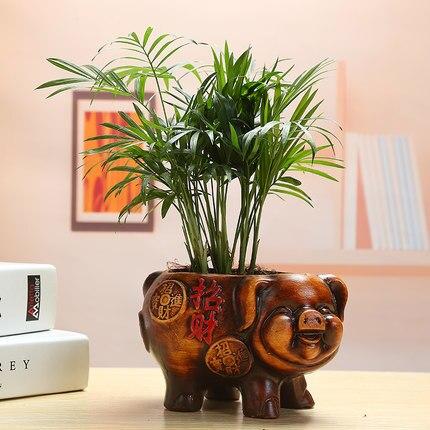 European retro rich tree eucalyptus ceramic flower pot Wenzhu green plant small potted flower bonsai flower desktop decoration