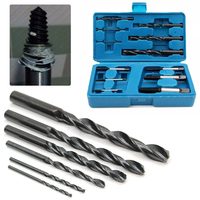 DWZ 12PCS HSS Broken Bolt Stud Fastener Remover Easy Out Rigid Screw Extractor Set