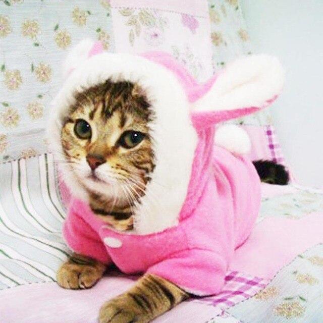 déguisement chat lapin