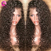 Eva Hair Curly Full Lace Human Hair Wigs Pre Plucked With Baby Hair Glueless Full Lace Wigs For Black Women Brazilian Remy Hair