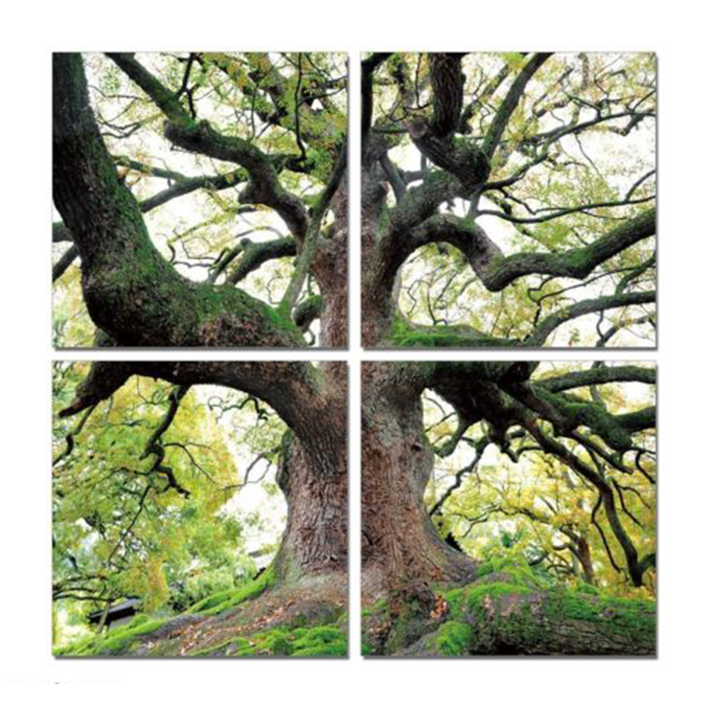 Wall Art Trees Green : Pcs no frame wall art green trees definition pictures