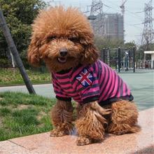 Sun Rainbow Dogs Clothes