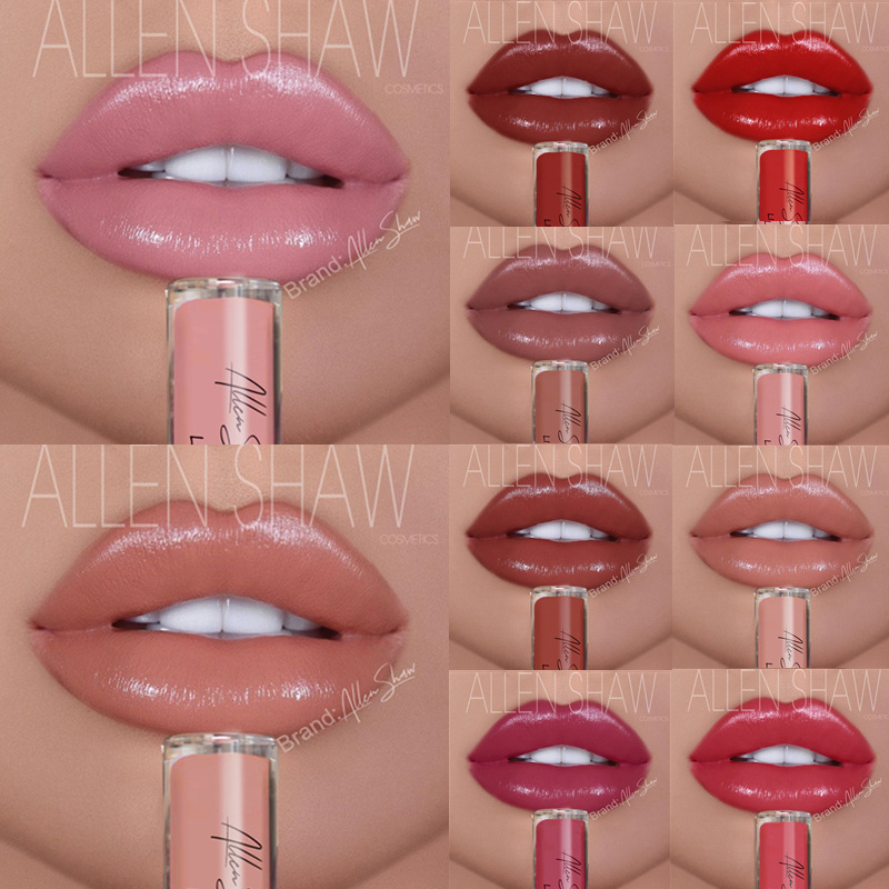 Lips Makeup Moisturizer Liquid Lipstick Long Lasting Smooth Creamy Easy to Wear Sexy Waterproof Pigments Lip Gloss Tint Cosmetic 5