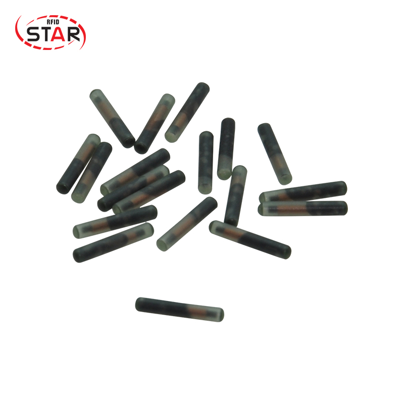 Free shipping 20PCS/Lot 13.56MHz NTAG216  Animal glass tube tag RFID 2.12*12mm Animal rfid glass capsule dog tag-in IC/ID Card from Security & Protection    2
