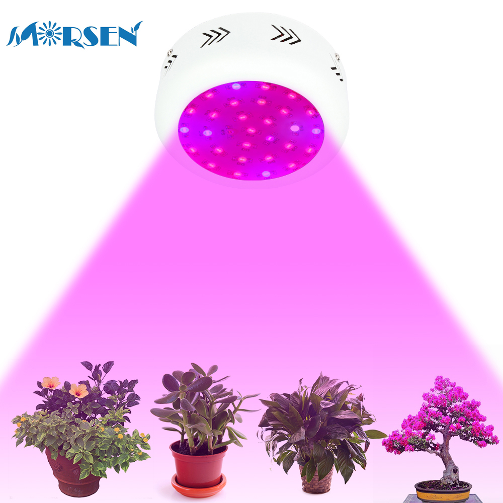 2pcs LED Grow Light Full Spectrum 300W UFO Double Chips Plant Lamp Red+Blue+White+UV+IR Indoor Greenhouse Hydroponic Grow Box#27 10pcs lot full spectrum led grow light 216w ufo grow box red blue white warm uv ir for indoor hydroponics plant and flower