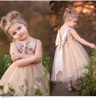 Lovely Champagne Flower Girl Dress Short Bead Cute Dresses Sleeveless Party Gown