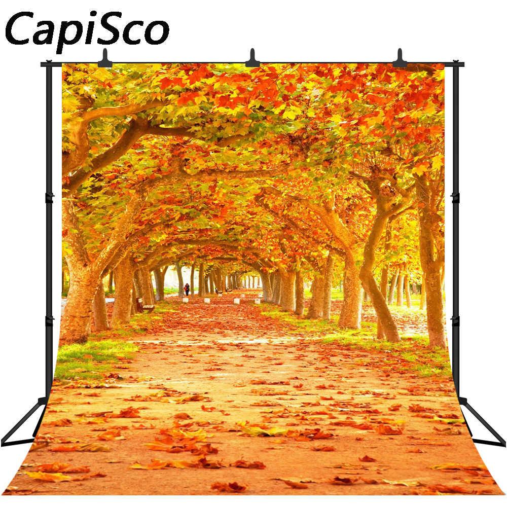 Capisco фотография Фон осенние листья красивый парк мечты естественный фон фотостудия камера fotografica
