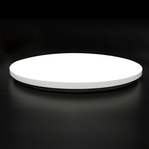 Modern LED Ceiling Lamp RC dim