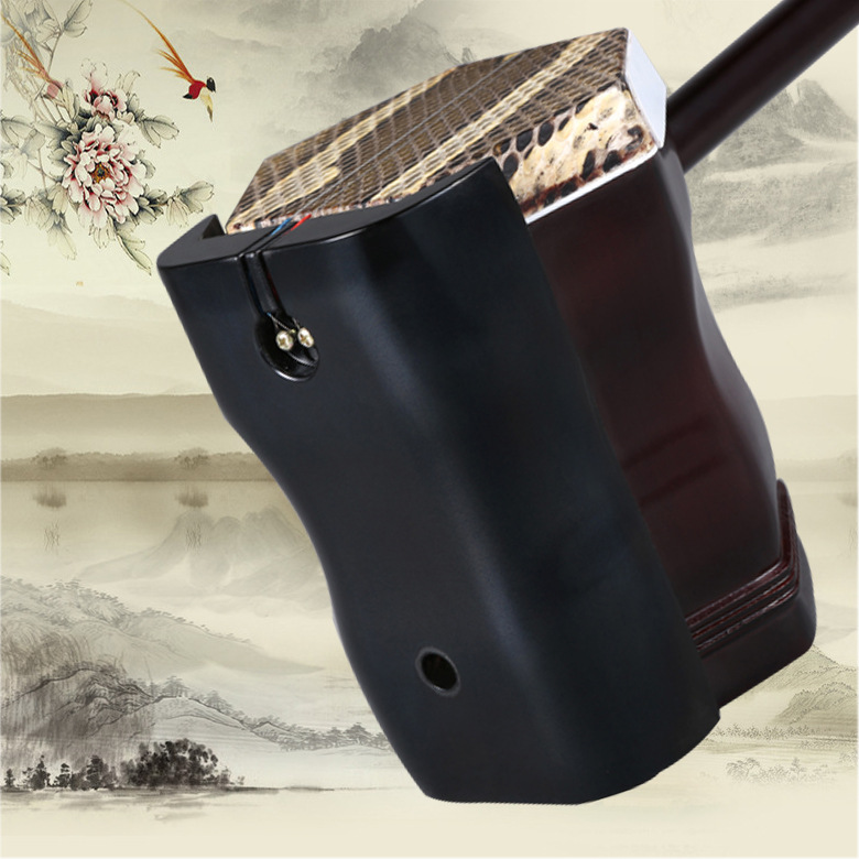 Whitewood Chinese Two Strings Erhu Violin Fiddle With Case Bow Strings Rosin Musical Instrument For Beginner in Urheen Accessories from Sports Entertainment