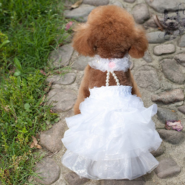 Dog Wedding Dress Female Clothes Summer Dresses Veil Party Pet Clothing Small