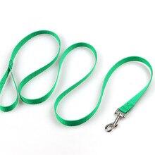 Basic nylon Leashes for dog