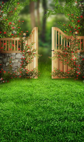 Red rose decor photo backgrounds garden gate photography backdrops for photo studio photographic background camera fotografia 600cm 300cm backgrounds garden beautiful sunshine photography backdrops photo lk 1566
