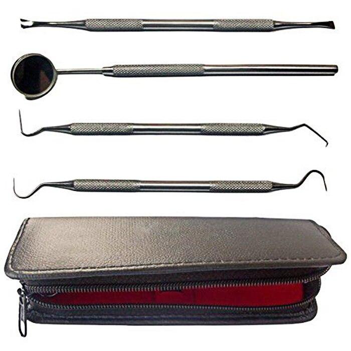 Hohe Qualität Zahnarzt Werkzeuge Persönliche Zahnarzt Tool Kit Edelstahl Tarter Remover Zahnstocher Hygiene Set