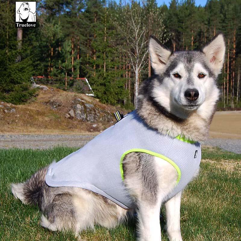 Truelove Sommer Hund Køling Vest Hund Køling Harness For Hunde - Pet produkter - Foto 5