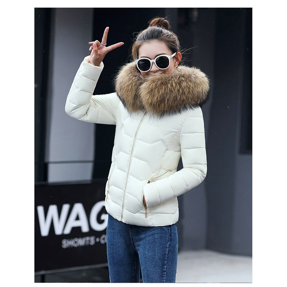 Female Warm Winter font b Jacket b font 2017 Fashion font b Women b font Hooded