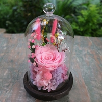 Immortal Rose Flowers In Glass Cover Cloche Wedding Decoration Mother's Day Gifts Micro Landscape Ornament Night Light Effect