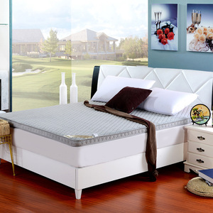 Image 2 - ثلاثي الأبعاد سماكة المرجان المخملية فراش مزدوج الوجهين أربعة مواسم سرير قابل للطي ، فراش ، السرير المنتج