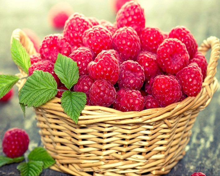 Diamond Painting Red Fruit Basket Wild Berry strawberries DIY 5d Pictures Of Diamond Embroidery Mosaic Drawings For Needlework