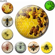 30 MM Honeybee Fridge Magnet Decor 3d Bee Animal Glass Dome Removable Glowing At Night Decorative Refrigerator Magnetic Stickers