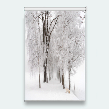 window blinds Sunscreen 3D Roller Blind Snow scene Used for Any room decoration roller blinds for windows