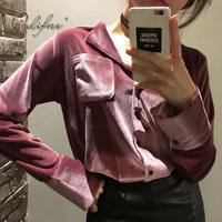 Ordifree 2018 Autumn Winter Women Velvet Shirt Long Sleeve Chemise Femme Casual Female Blouse Shirt Grey Pink Velvet Shirt