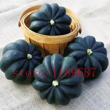 20 Heirloom Acorn Squash Seed -black skin squash  Table King Squash, Non-gmo vegetable seeds for home garden