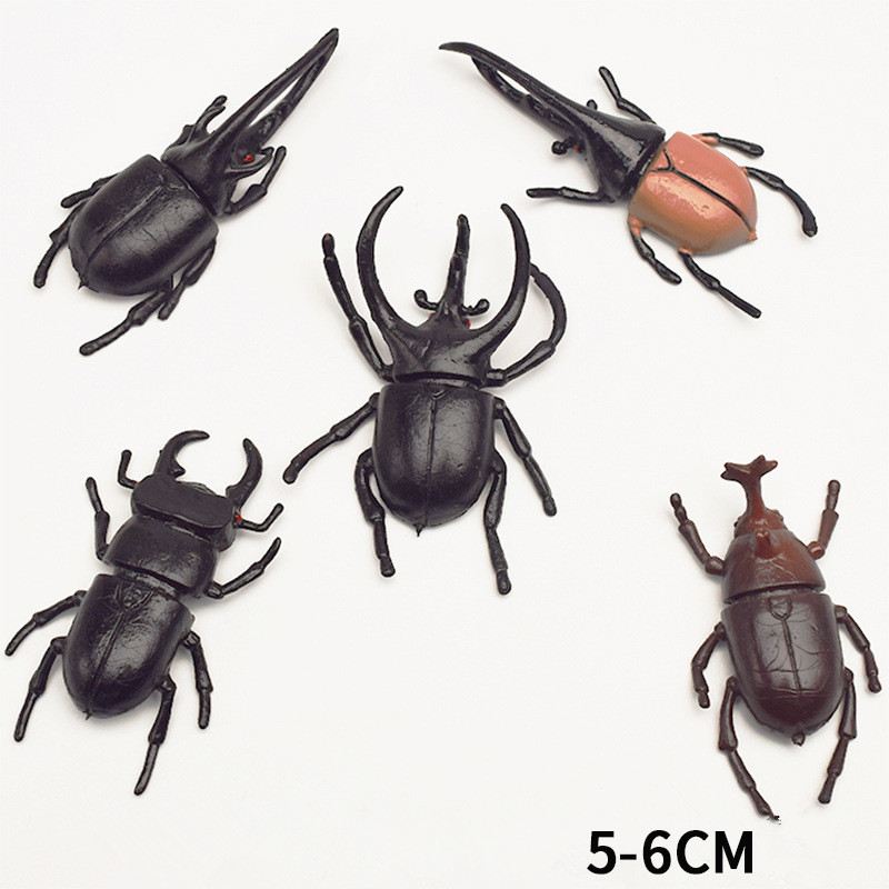 5pcs 5.5cm simulation beetle Toys Special Lifelike Model Simulation insect Toy nursery teaching aids joke toys