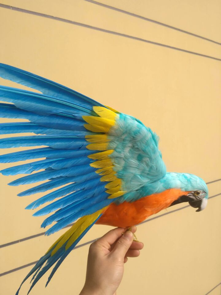 big new simulation blue&orange parrot model polyethylene & furs wings parrot doll gift about 60x45cm 0769 finger rock blue enchantress simulation flower assembly model 3d metal puzzle never fade red rose stainless steel jigsaw gift
