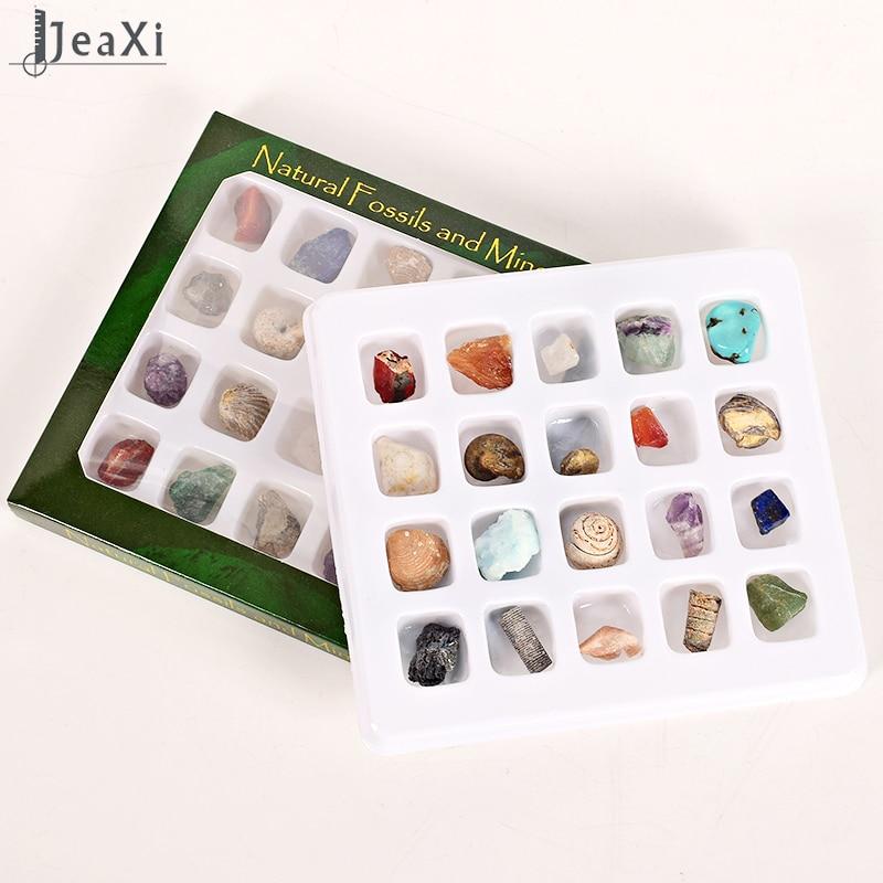 20 дана Фоссилдер минералдары - Үйдің декоры - фото 2