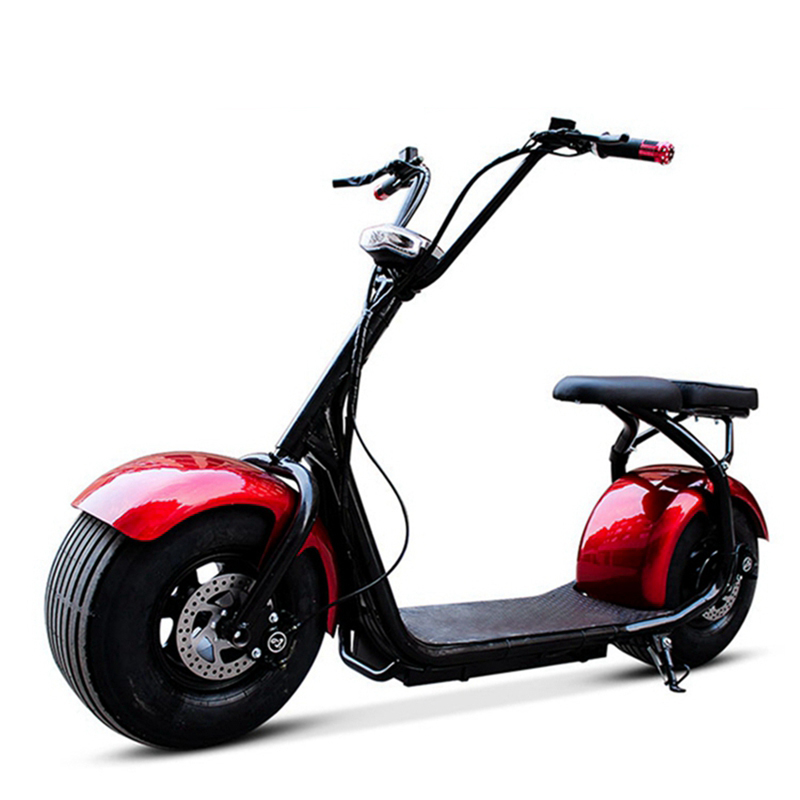 Scooter électrique amortisseur adulte vélo électrique Double pneu moto électrique