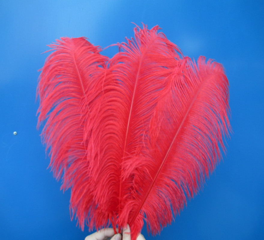 20 pcs beautiful red ostrich feathers 18-20 inches  45-50 cm