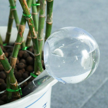 House Garden Water Houseplant Plant Pot Bulb Automatic Self Watering Device cheap Water Cans Plastic 4 size available 13cm*5cm 26 5cm*8cm Watering Apparatus
