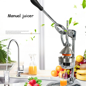Stainless Steel Citrus Fruits