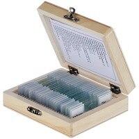 AmScope PS25W 25 Preparado Lâminas de Microscópio de Vidro com Caixa De Madeira