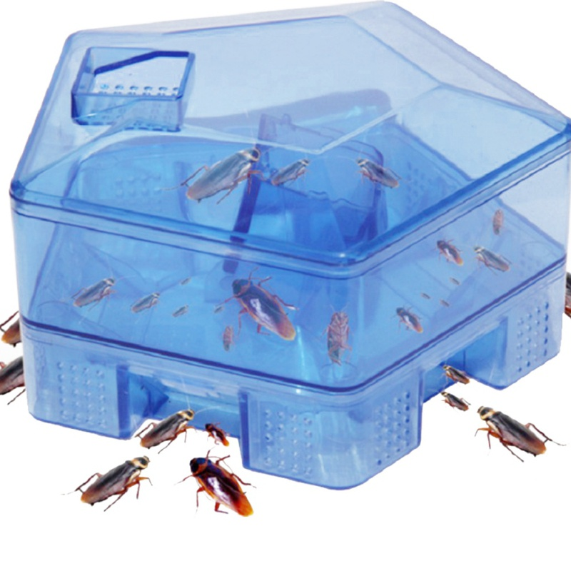 Kitchen Cockroaches Trap Box Home Cockroach Killer Bait Traps Effective Pesticide Pest Control For Home Restaurant Office