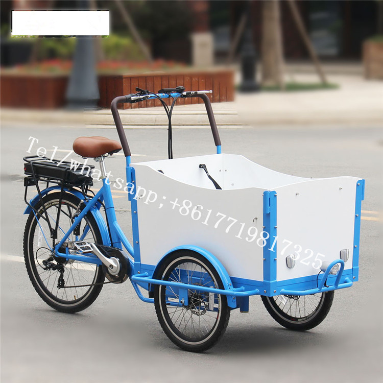 T05A Blue And White Color 250W 3 Wheel Electric Cargo Bike For Carrying Kids