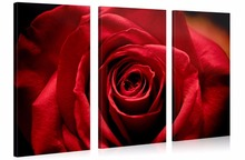 3 Pieces/set Canvas Printed Painting Red rose Painting Wall Art Decorative Modular Picture for Living Room framed