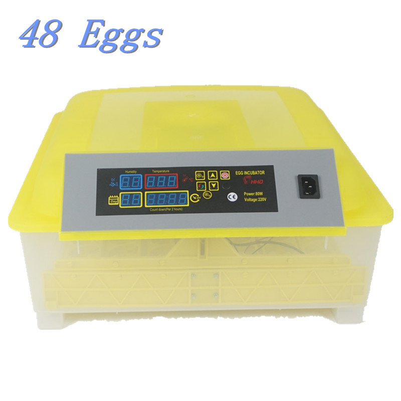 48 Mini Chicken Egg Incubators Sale Turning Motor Control Tray Automatic Chicken Duck Geese Pigeon Quail Parrot Incub top sale household farm egg incubators 24 egg incubators for led display turner for sale